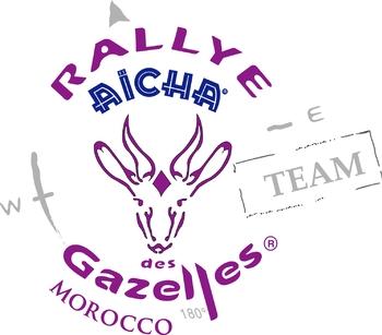 logo_team_violet