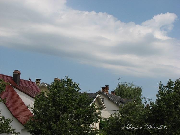 Ciel d'Alsace 321