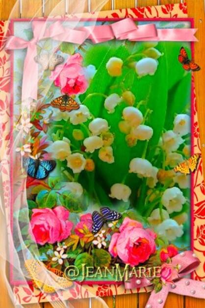 Spècial fête du premier Mai(copie interdite sans autoriqation)