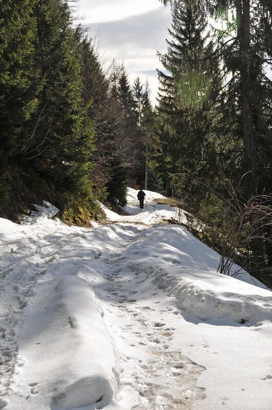 Balade d'hiver : l'Arpaz (2)