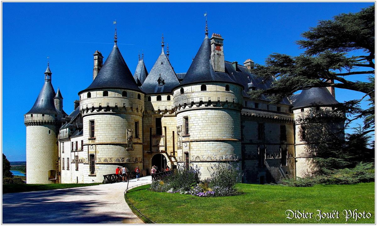 41 . Loir et Cher - Chaumont sur Loire (1) - Château de Chaumont
