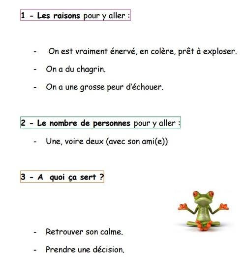 les émotions en classe - tout un programme - article 1/3 par @fannie325