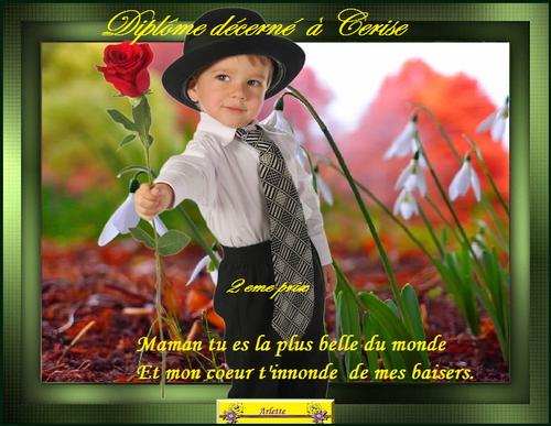 """Résultat du vote """"Le petit garçon à la rose"""""""