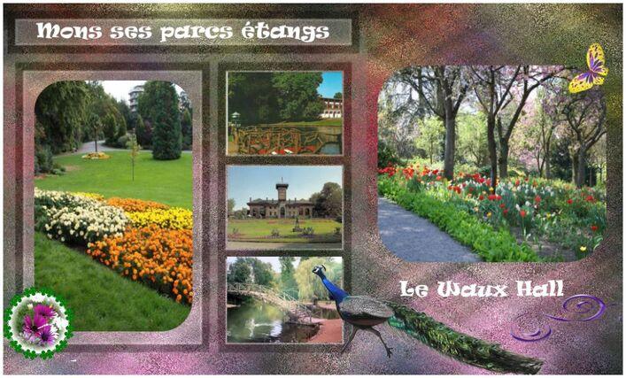 waux hall, parc, d'arbres séculaires, etangs, villede mons,canotage, park, bremen, bloemen, flowers