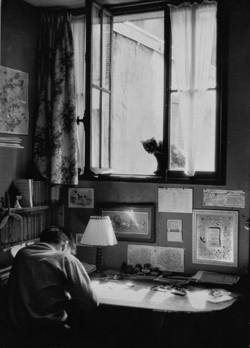 Willy Ronis, Vincent et le chat, Paris 1955