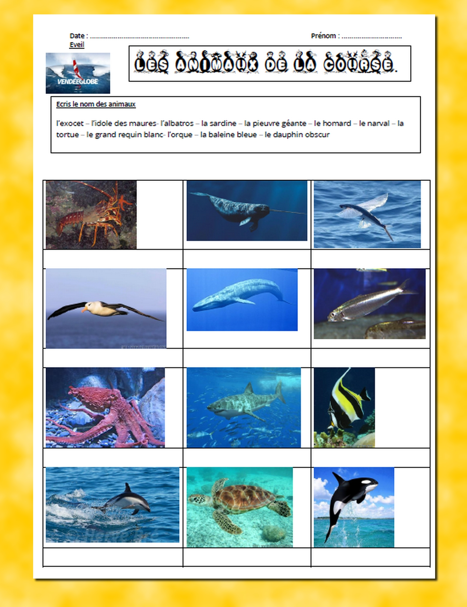 presentation animaux course 2020
