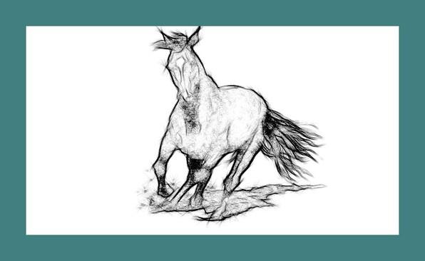 Dessin et peinture - vidéo 2247 : Comment dessiner un cheval au galop, au fusain ou au crayon graphite ?