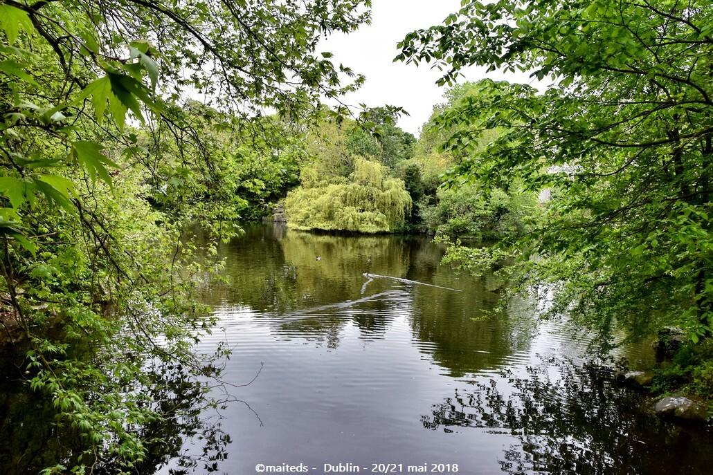 St Stephen's Green - Dublin - Irlande (5)