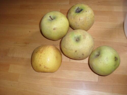 Des chaussons aux pommes pour le goûter