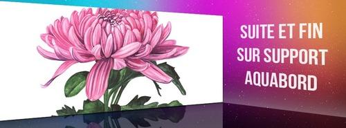 Dessin et peinture - vidéo 3557 : Peindre une fleur de chrysanthème sur papier aquarelle et support aquabord 2/2 - aquarelle.