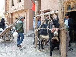 Chine : Kashgar
