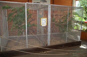 Zoo Saarbrücken 2012 114