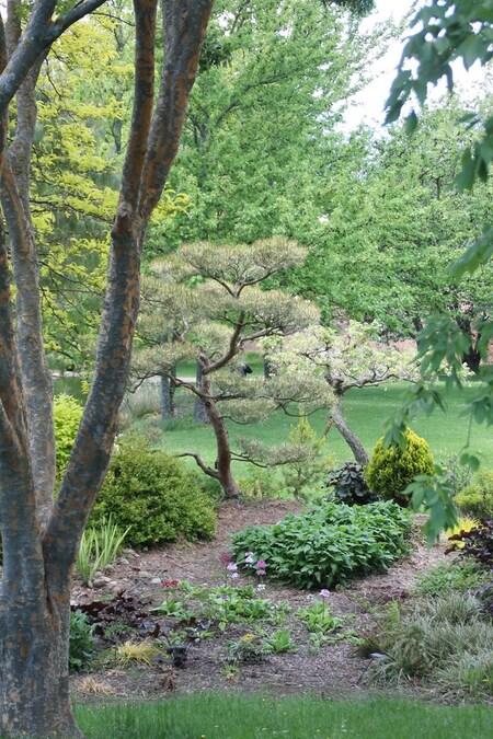 Le Bois Marquis 2