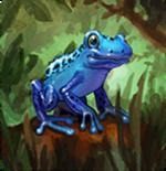 mfz_poisondartfrog