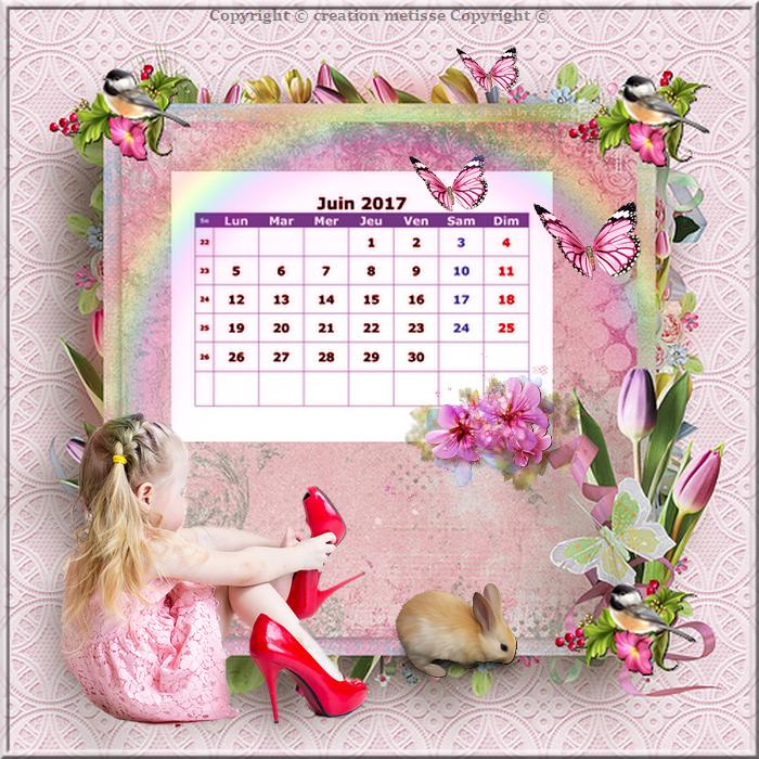 CRÉATION MÉTISSE calendrier mois juin 2017