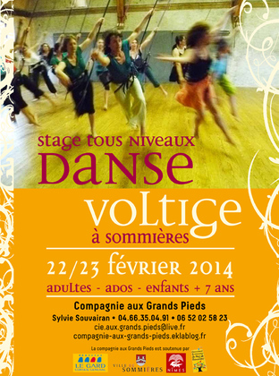 Stages de danse voltige