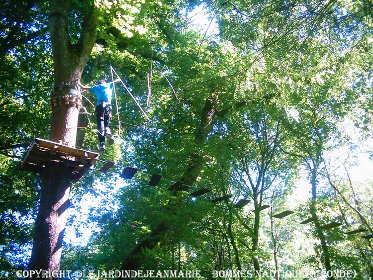 Bommes (Gironde)DESCENTE DU CIRON EN GROUPE SANS ENCADREMENT EN CANOË ... PARCOURS AVENTURE EN HAUTEUR : Parcours accrobranche dans les arbres