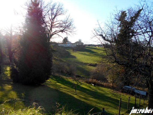 Balade en Janvier sous un soleil de printemps