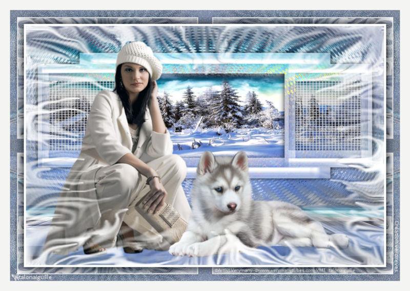 *** Fenêtre sur l'hiver ***