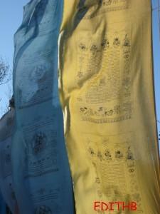 temple bouddhiste18-9-09 239 (8)