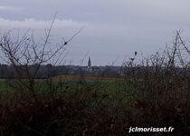 le clocher de Tiffauges