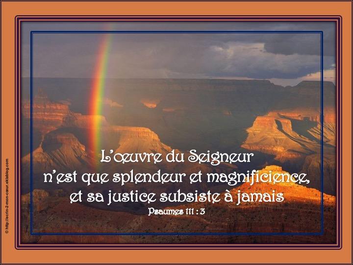 L'oeuvre du Seigneur est splendeur, sa justice subsiste à jamais - Psaumes 111 : 3