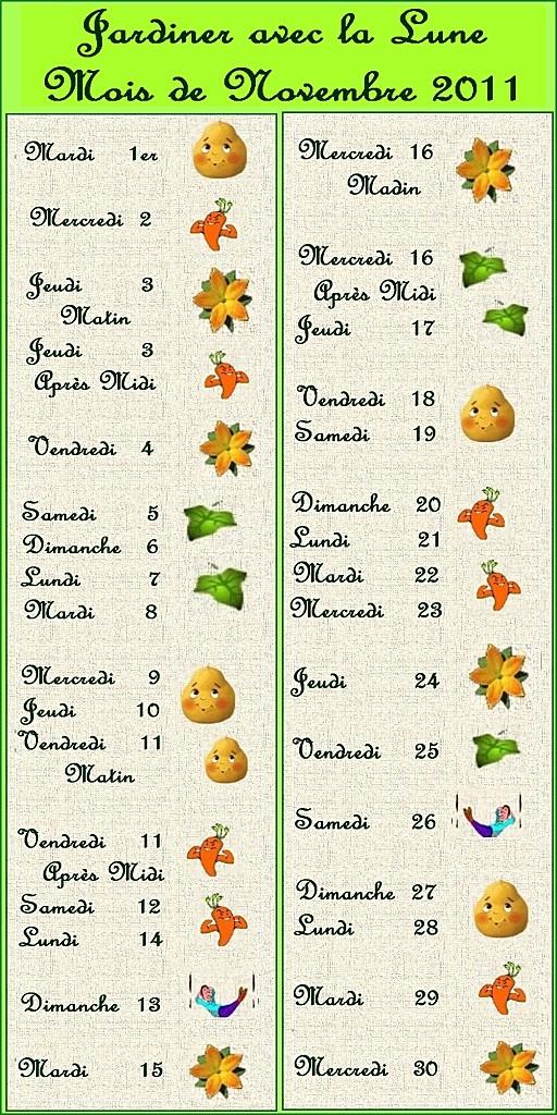 jardiner-aec-la-lune-novembre-2011.jpg
