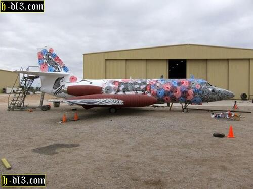 Peintures et décorations d'avions de ligne