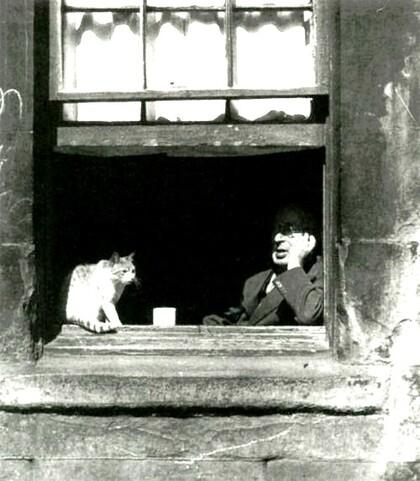09 - Des chats et des hommes suite