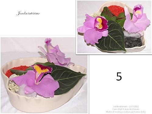 2012 03 13 jardin interieur floriscola (8)