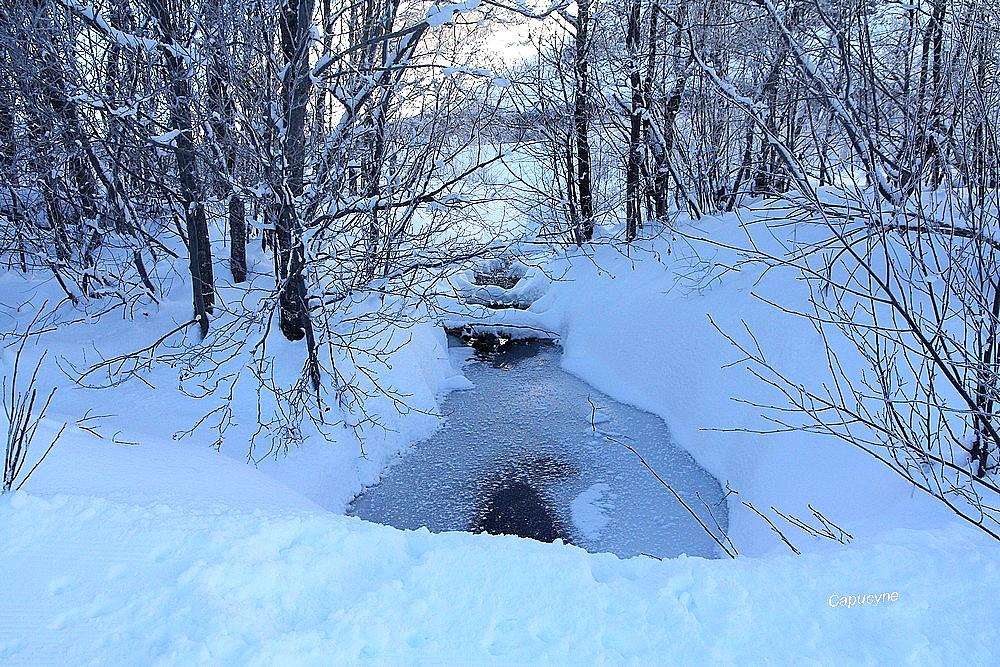 Neige : L'eau et la neige