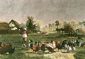 Constant-Troyon-Farmyard-With-Chickens--Restrike-Etching--3
