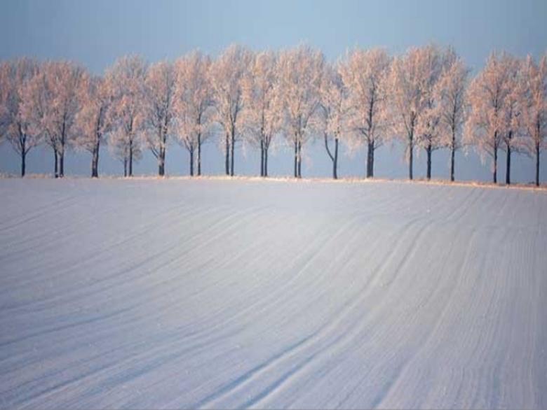 a chaque saison son paysage