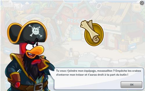 Guide fête pirate