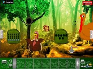 Jouer à Giant turkey forest escape