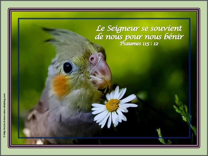 Le Seigneur se souvient de nous pour nous bénir - Psaumes 115 : 12