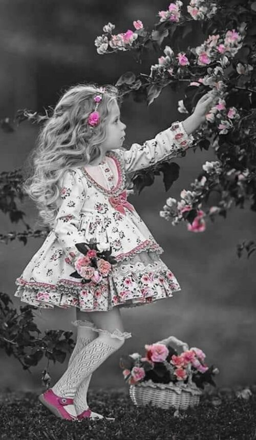 Le conte de la petite fille qui ....