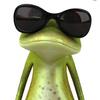 Demi-grenouille