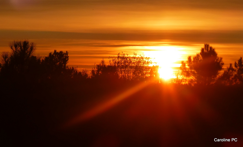 Le site d 39 hivernage des grues arjuzanx caroline pc40 - A quelle heure se couche le soleil ce soir ...