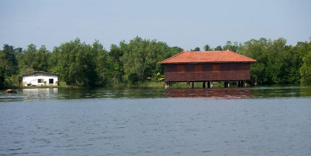 Estuaire du Madu Ganga - Sri Lanka