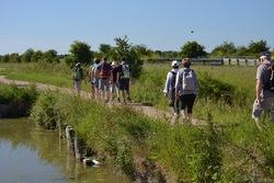 La randonnée du 11 juin à Cabourg