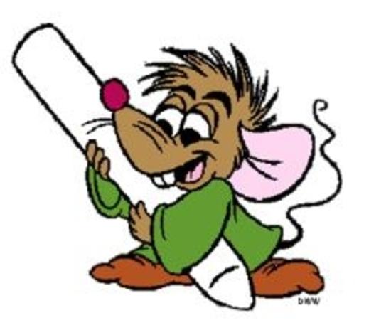 fin de la prsentation des souris