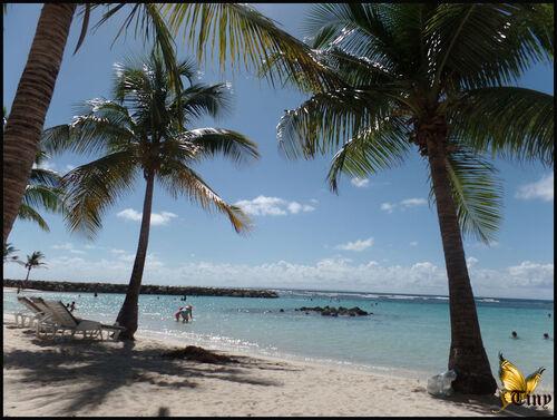 Plages de la Guadeloupe, Sainte-Anne