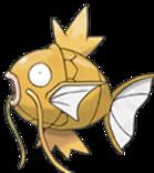 Tournois Pokemon