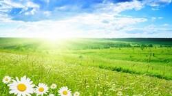 Bonjour le printemps.
