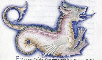 cetus-dragon