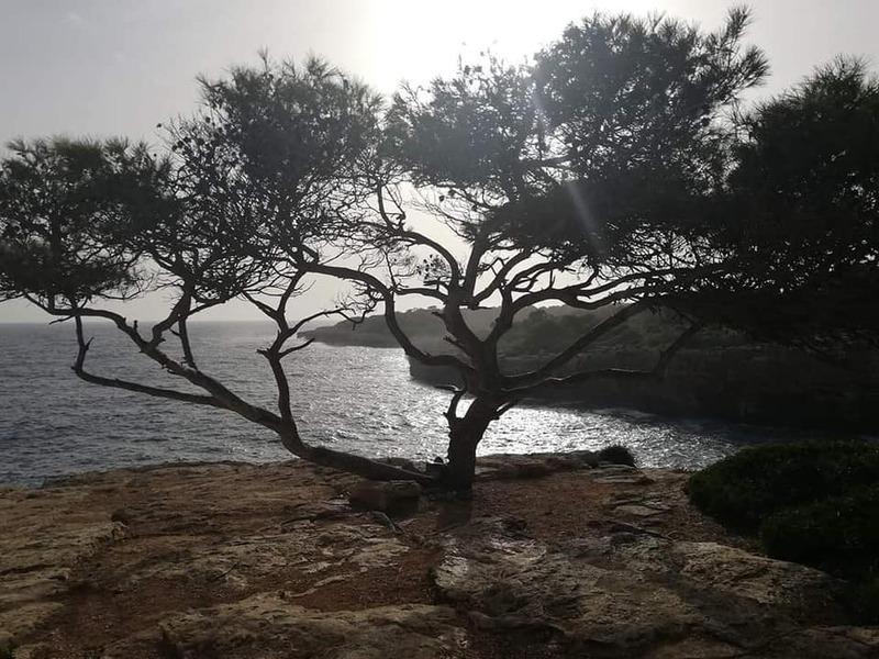 Majorque en novembre