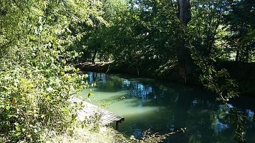 l'île de la guinguette du martin pêcheur est dans l'eau