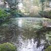 Altamont garden