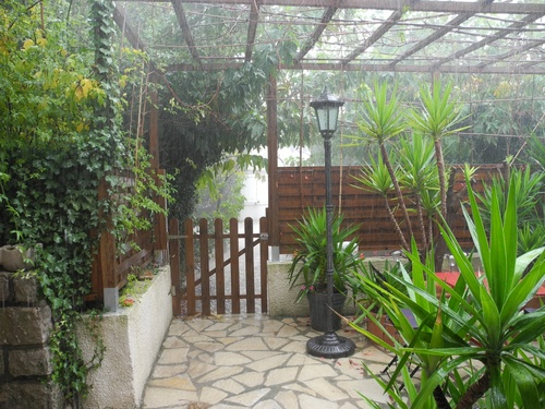 Toussaint il pleut sur mon jardin.